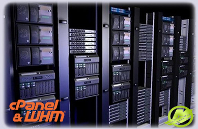 Cheap Dedicated Servers with 1 GBPs Uplink Port || 99 9